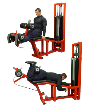 Leg-Extension-Leg-Curl-Machine