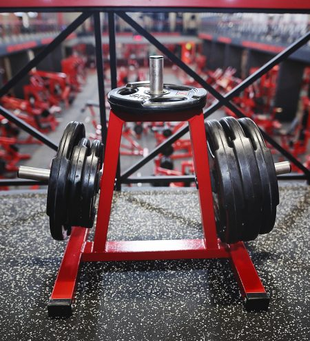 Universal-Stand-for-Disc-Weight