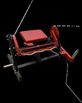 maquina-biceps-curl