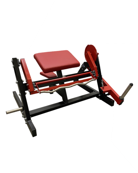 Biceps-Machine