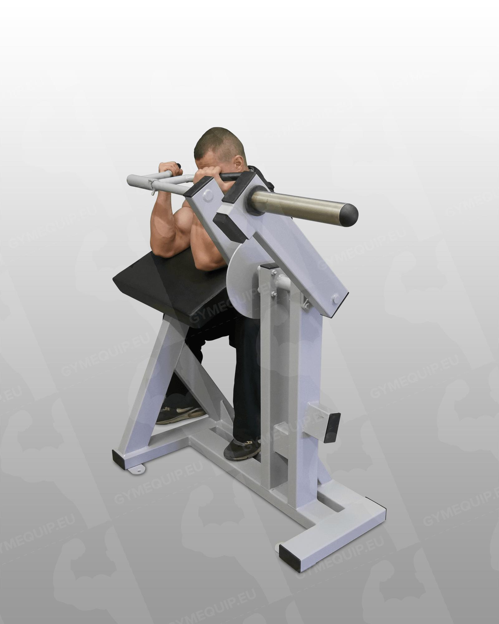 biceps machine - photo #44