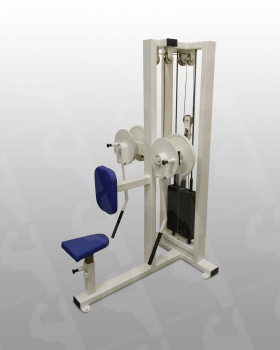 Lateral Shoulder Raise Machine