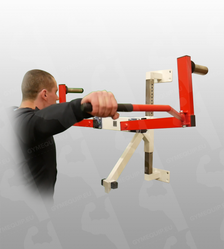 Lateral Shoulder Raise Machine Wall Mounted