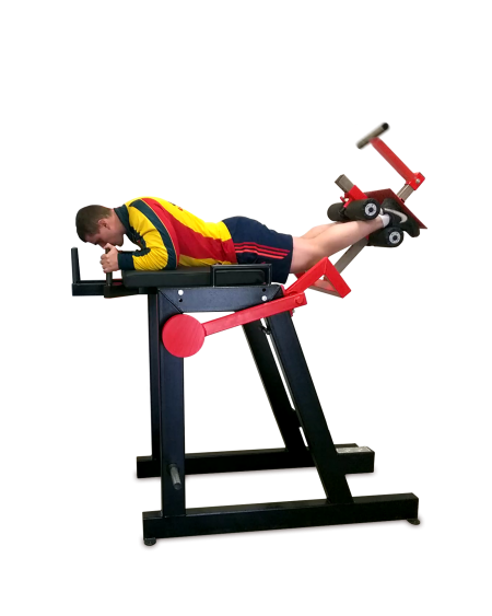 Reverse-Hyperextension-Machine